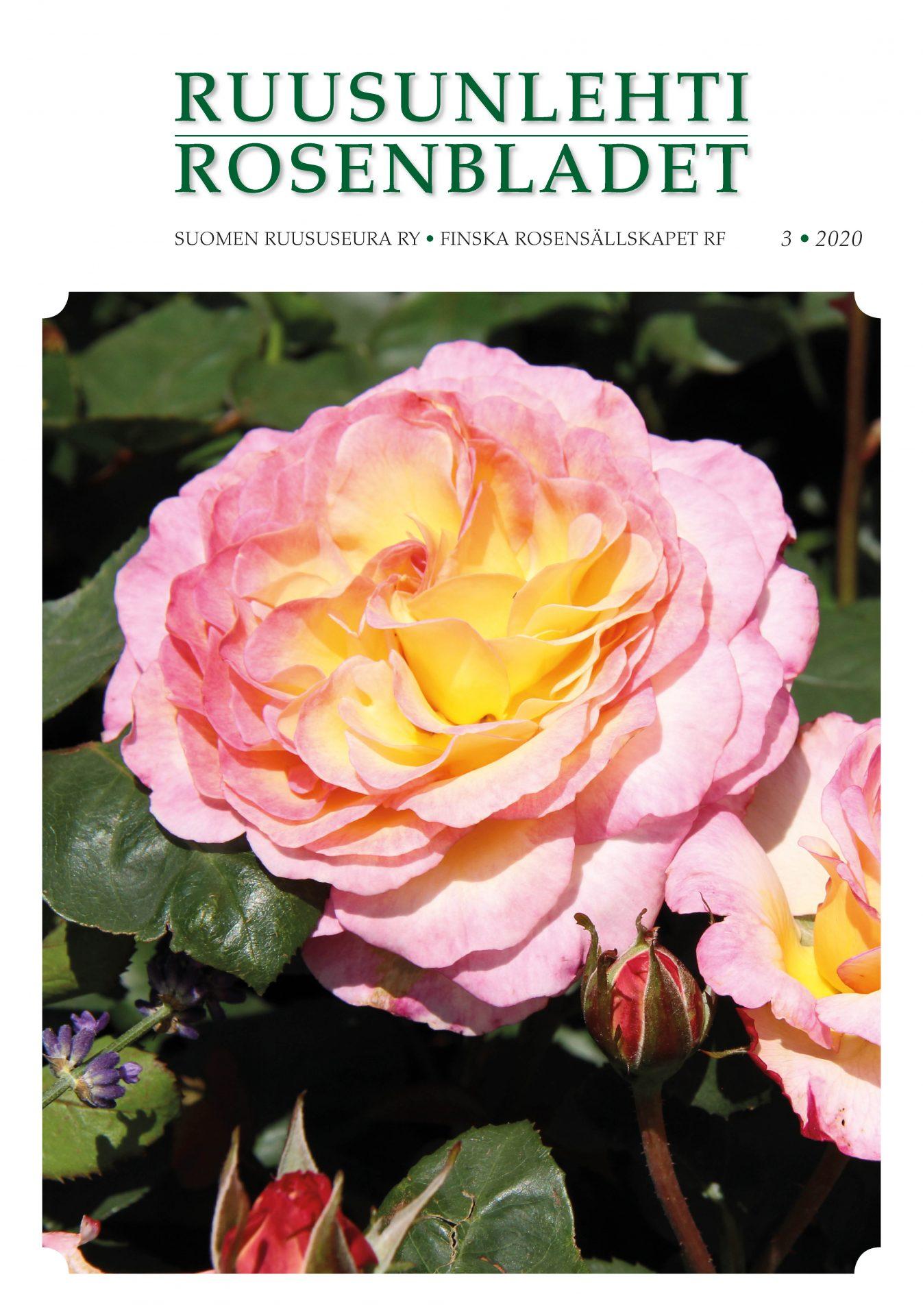 Rosenbladet 3-2020 pärm